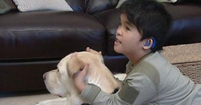 El perro, el mejor oído de un niño sordo.