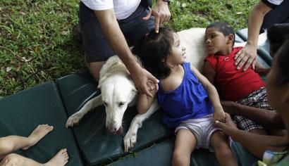 En Perú, terapias con perros que ayudan a niños discapacitados a mejorar su calidad de vida.