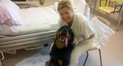 Hospital en Genova, Italia. Este perro ha sido admitido para festejar la recuperación de su cuidadora.