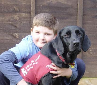 Perros para personas con discapacidad auditiva