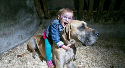 Un gran danés detecta los ataques epilépticos de una niña de tres años
