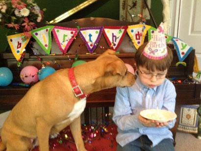 Xena, cachorra moribunda por inanación, se salva y se convierte en la mejor terapia para Jenny, un niño autista.